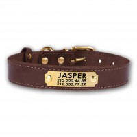 Personalised Dog Collar, Custom Pet Collar