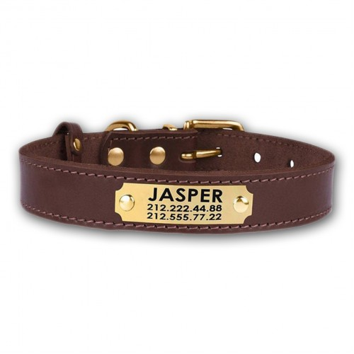 Personalised Custom Dog Collar with Nameplate - Leather