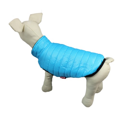 Blue puppy coat cold winter warm essential