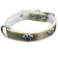 Golden Paw Charm Adjustable Pet Collars
