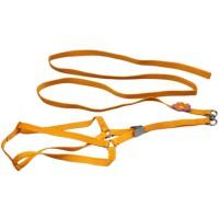Pure Single Flower Dog Harnesses&Leads Orange