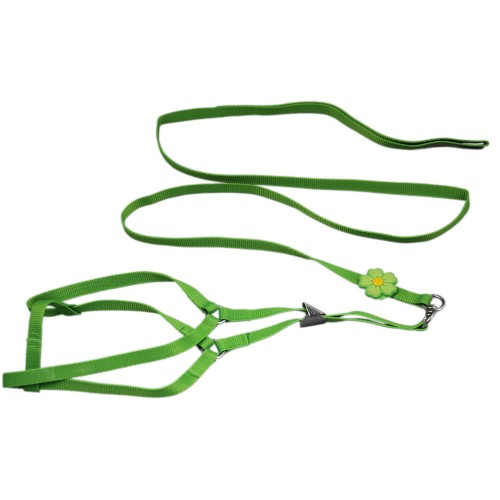 Pure Single Flower Dog Harnesses&Leads Green