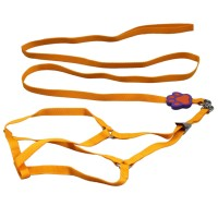 Pet Footprint Harnesses&Leads-Orange