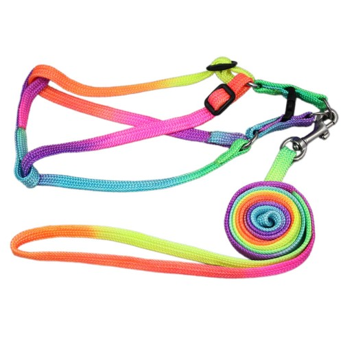 Colorful Rainbow Series Pet Harnesses&Leads