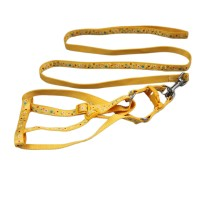 Small Floral Series Nylon Pet Collars & Leashes Yellow